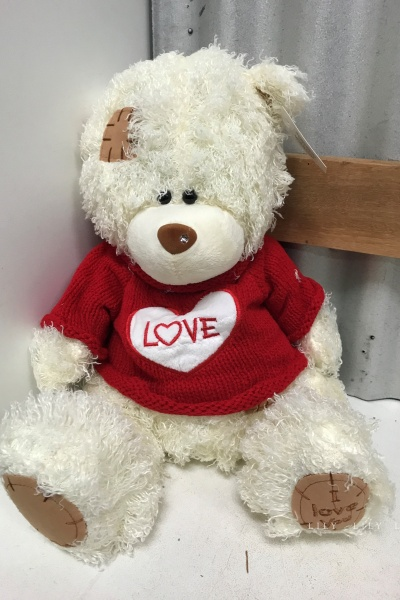love_teddy